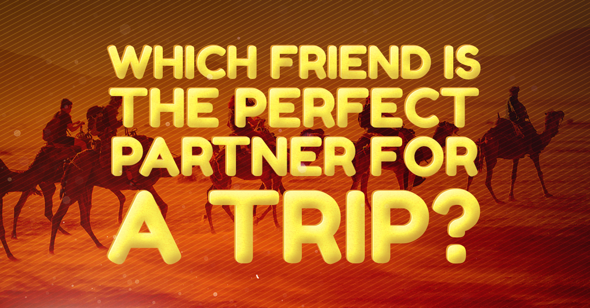 PerfectPartnerTrip
